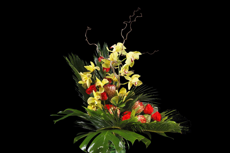 Мужские цветы